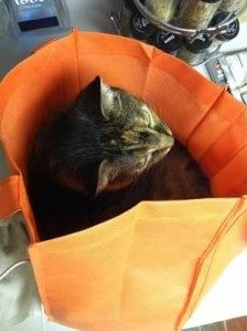 She also loves reusable bags and boxes.