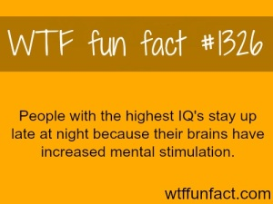 WTF Fact